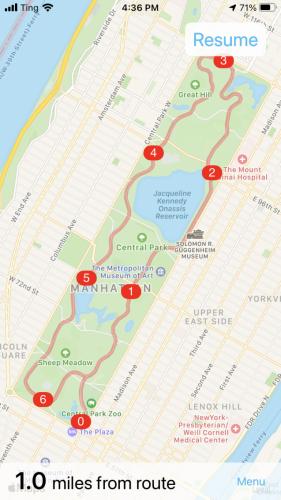 BikeGPX Screenshot of Central Park Ride